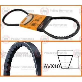 AVX10X1013