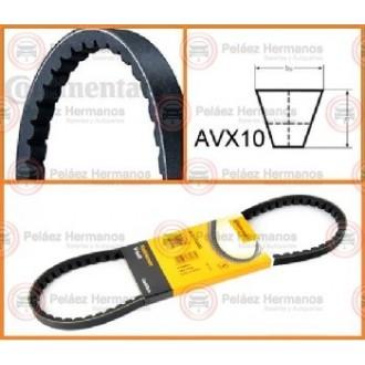 AVX10X1065